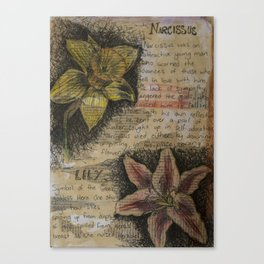 Daffodil collage Canvas Print