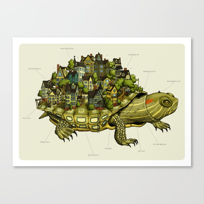Turtle Town Canvas Print