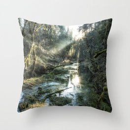 McKenzie River Tributary Throw Pillow