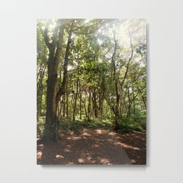 Forest Shade Metal Print