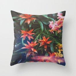 Fantasia SS16 Throw Pillow