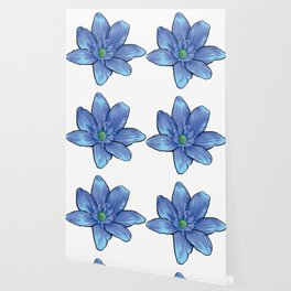 Blue Gentian Flower Wallpaper