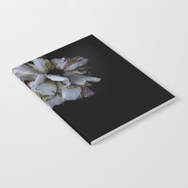 Decaying flowers Notebook