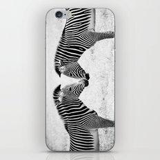 Two Zebras iPhone & iPod Skin