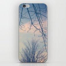 Blue Moon iPhone & iPod Skin