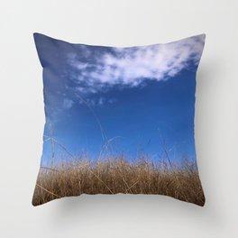 Brownish Grass and Blue Sky Throw Pillow