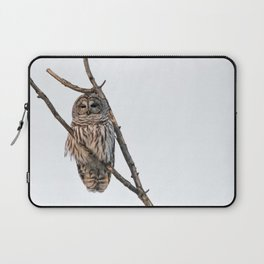 Barred Owl visitor on New Years Eve Laptop Sleeve