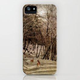 Mountain Path iPhone Case