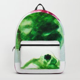 Daphnia Backpack