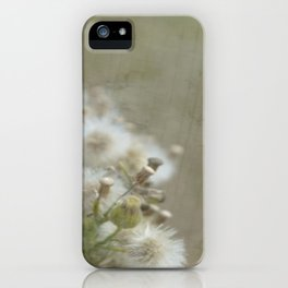 Hierakion iPhone Case