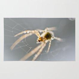 Little Spider Rug