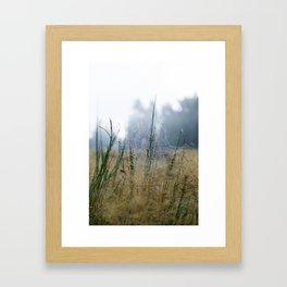Early morning dew Framed Art Print