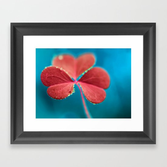 You turn my heart every which way - pink clover macro. Framed Art Print