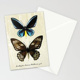 Butterfly09_Ornithoptera Priamus Urvilleanus pair Stationery Cards