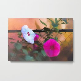 Hibiscus Beauties Metal Print