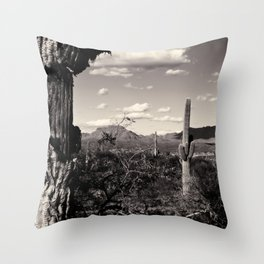 Wild Wild West Throw Pillow