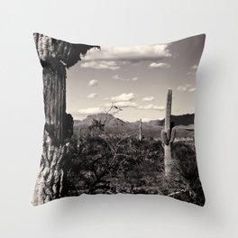 Wild Wild West Throw Pillow