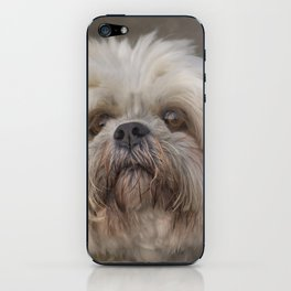 The Shih Tzu iPhone Skin