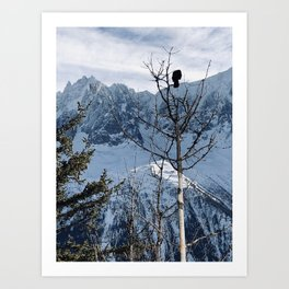 Bird on a tree \\ French Alps Art Print