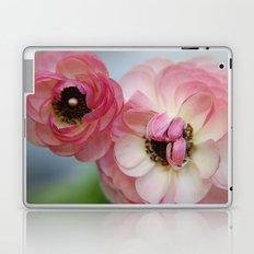 Pink Ranunculus Flower Laptop & iPad Skin