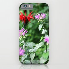 Bee Balm Slim Case iPhone 6s