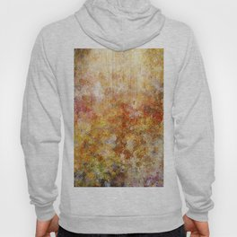 Mod Nature Trail Multicolor Pattern Hoody