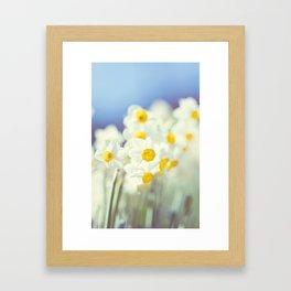 Daffy flowers Framed Art Print