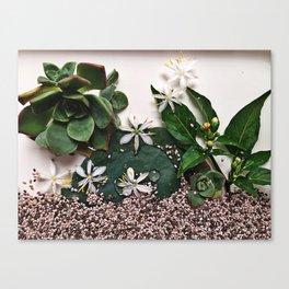 Arrangement 4-2015 Canvas Print