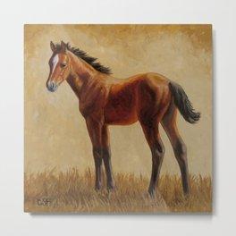 Bay Quarter Horse Foal Metal Print