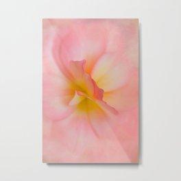 Begonia No.1 Metal Print