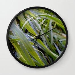 water and greenery Wall Clock