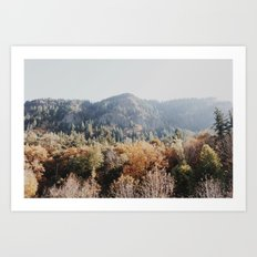 fall Covered Mountain Art Print