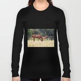 Horses family 2 Long Sleeve T-shirt