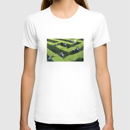 Funny man in Maze T-shirt