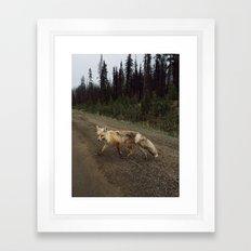 Fox Trot Framed Art Print