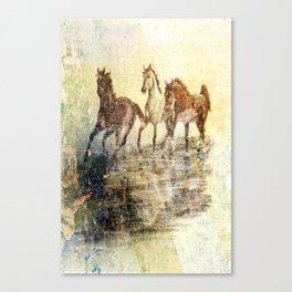 Vintage Horses Colours Canvas Print