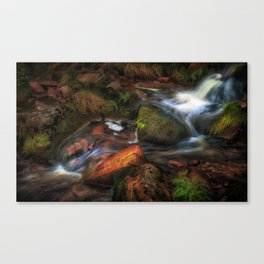 Colours of Autumn in a Brecon stream Canvas Print