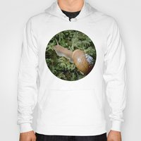oregon Hoodies featuring Oregon Forestsnail by A Wandering Soul