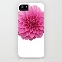 November Chrysanthemum Flower Designer Or Arranger Gift iPhone Case
