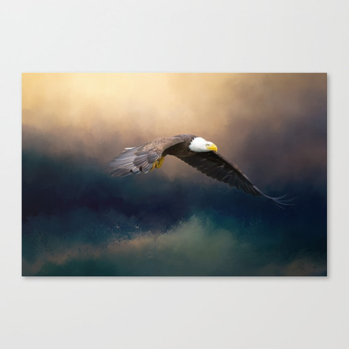 Painting flying american bald eagle Canvas Print