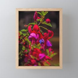 Fuchsia Dreams Framed Mini Art Print