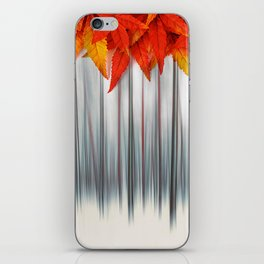 Seasons Change iPhone Skin