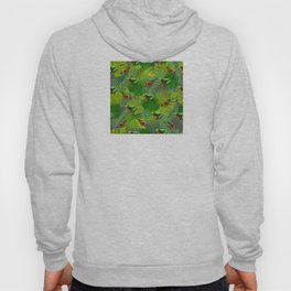 Frogs and Monarchs Hoody