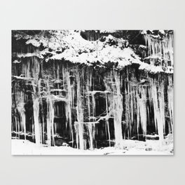 Miller's Creek Icicles Canvas Print