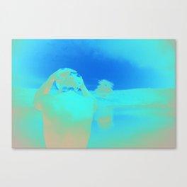 Reflection 02 Canvas Print