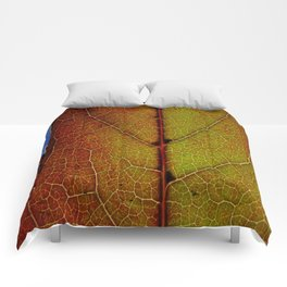 Fall Colors In Southern California Comforters