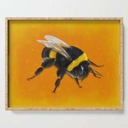 Fuzzy Bumblebee Serving Tray