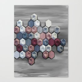 hex abstract Canvas Print