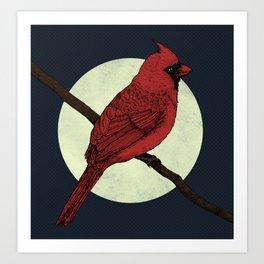 Night Cardinal Art Print
