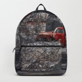 Aging Beauty Backpack